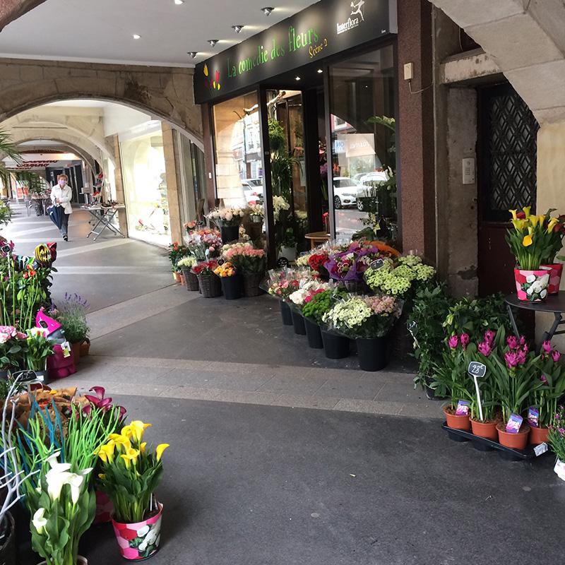 La comédie des fleurs Remiremont